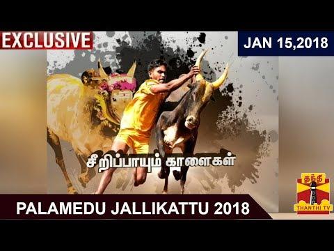 Palamedu Jallikattu 2018 | Exclusive Coverage | Thanthi TV