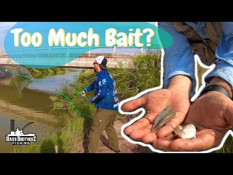 South Padre Island Fishing 2019 - East Cut Trip Part 1 Too Much Mullet?