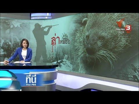 """พบหลักฐานคดี """"ล่าหมีขอ"""" - วันที่ 09 Oct 2018"""