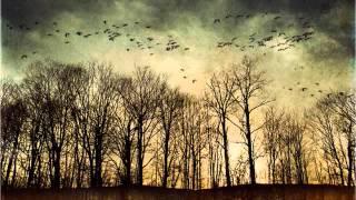 Barbirolli conducts Delius - Irmelin Prelude