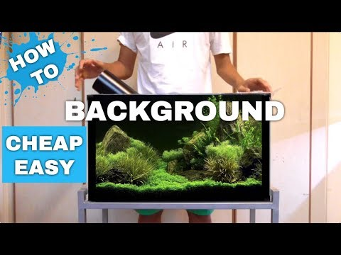 HOW TO: CHEAP AND EASY AQUARIUM BACKGROUND