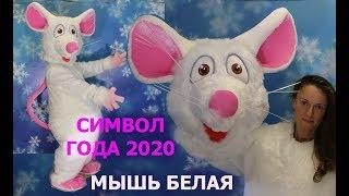 как сделать голову мышки