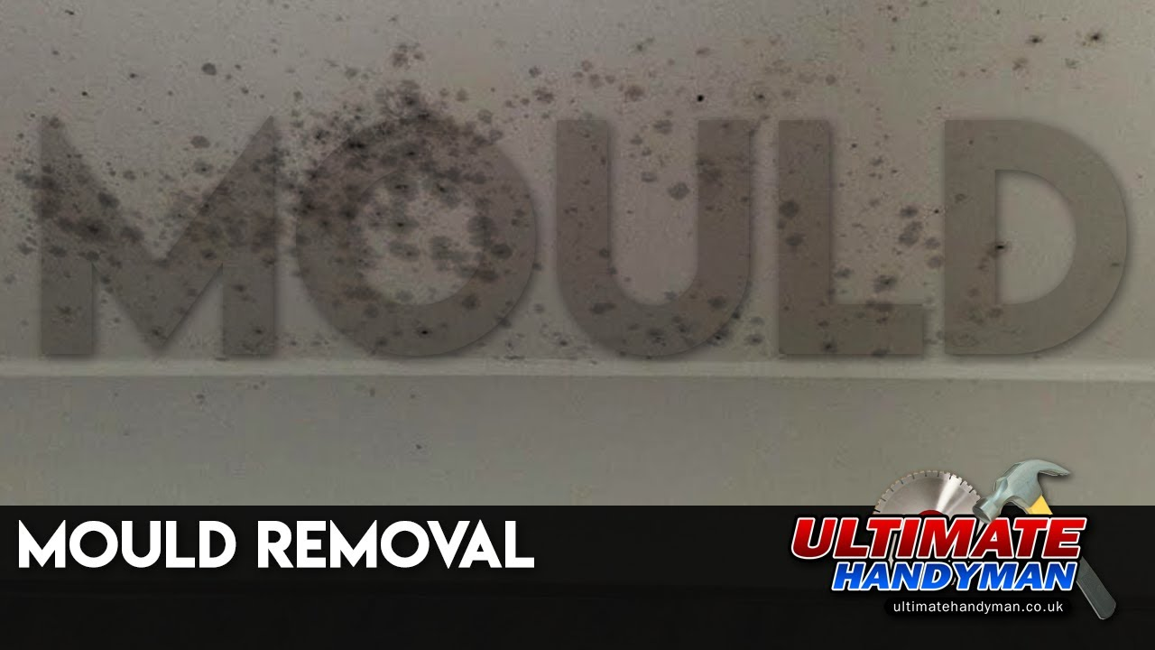 How To Kill Bathroom Mold mould removal - youtube