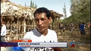 Abundan en el interior de Cuba vallas clandestinas para peleas de gallos