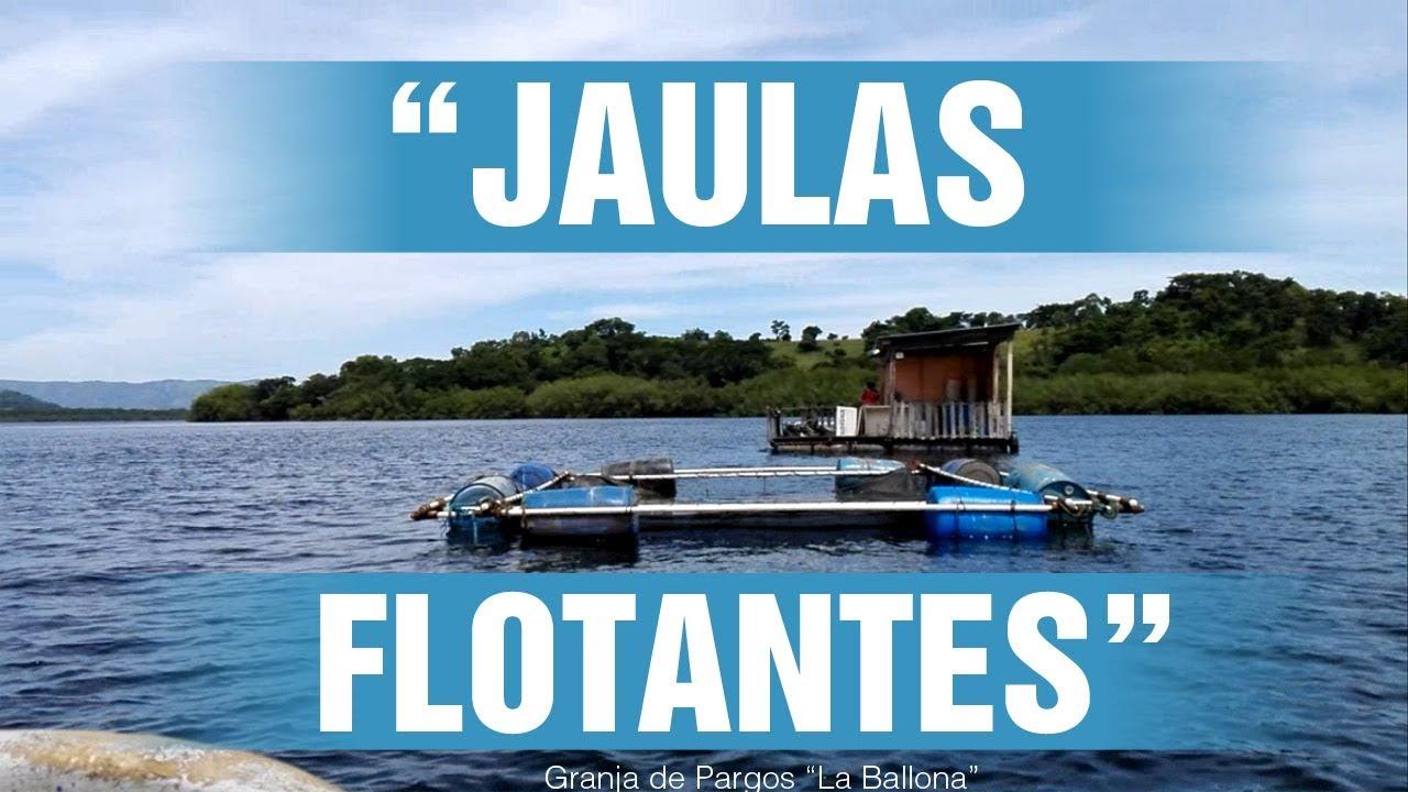 Artes de pesca jaulas flotantes piscicultura comunidad la for Jaulas flotantes para piscicultura