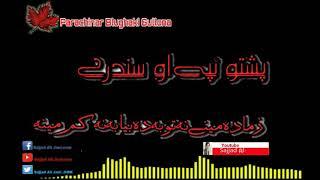 Pashto New Song 2019 Pashto Hd Song