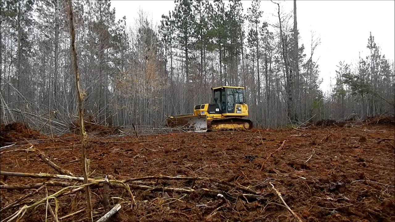 Image result for BULLDOZERS CLEARING FOREST