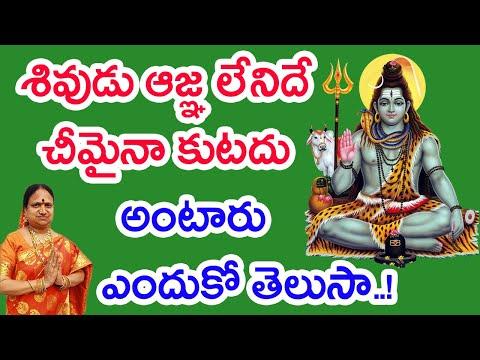 శివుడు ఆజ్ఞ లేనిదే చీమైనా కుటదు అంటారు ఎందుకో తెలుసా..! | G. Sitasarma Vijayamargam