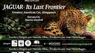 Jaguar, Its Last Frontier