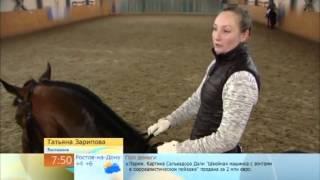 Ледовое шоу ТРИ МУШКЕТЕРА - Первый канал