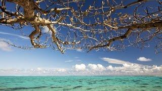 Útěk na Tahiti a jeho ostrovy ceske cele filmy cz dabing Dokumentární HD