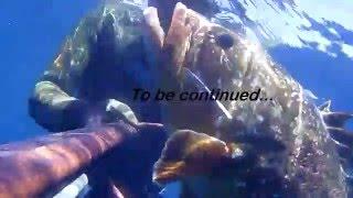 Spearfishing, Podvodni ribolov, Oleg Vlahov, Dentex Dentex III, 2015