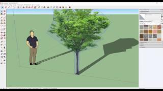 Создаём растения в SketchUp