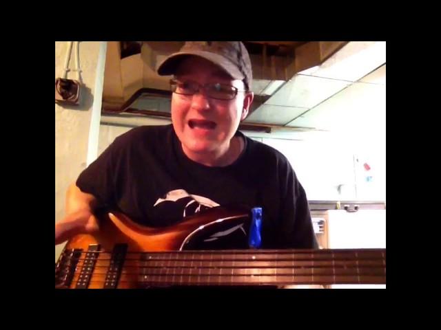 La Bella Tapewound Bass Strings Review