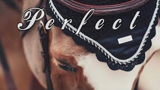 Perfect    Show Jumping Music Video   