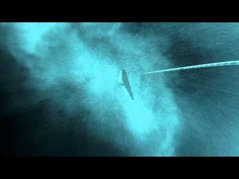 Wonders Of Dean's Blue Hole