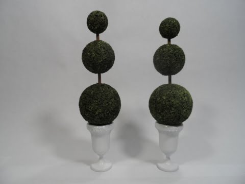 Tutorial Scale Topiary Boxwood Plant