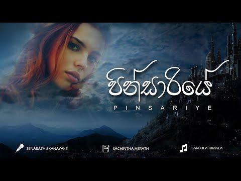 පින්සාරියේ | PINSARIYE - Senarath Ekanayake (Sinhala Techno Song)