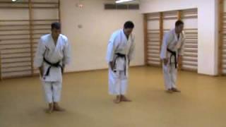 Oyo Bunkai Pinan Sandan (www.karateBCN.com)
