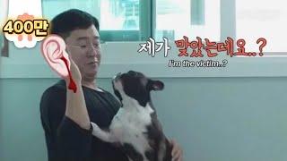 이 이야기는 아무튼 학대에 관한 이야기입니다 ㅣ In A House Where An Abused Dog Cries Every Day.. *Plot Twist*