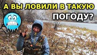 ОСЕННИЙ ЖОР Рыбалка в октябре Рыбалка осенью Рыбалка на спиннинг осенью