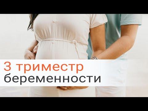 Что стоит знать о ведение беременности в 3-м триместре?