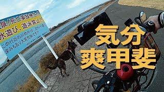 前回動画の続きです。2月下旬、海老名市にある相模三川公園。体力が有り...
