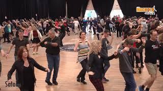 Salam D+T Michael Barzelai סאלאם לימוד וריקוד- מיכאל ברזילי