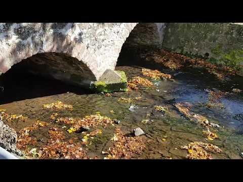 Der Laisbach, Klänge eines Dorfbachs in Oberhessen / The sights and sounds of a German village brook