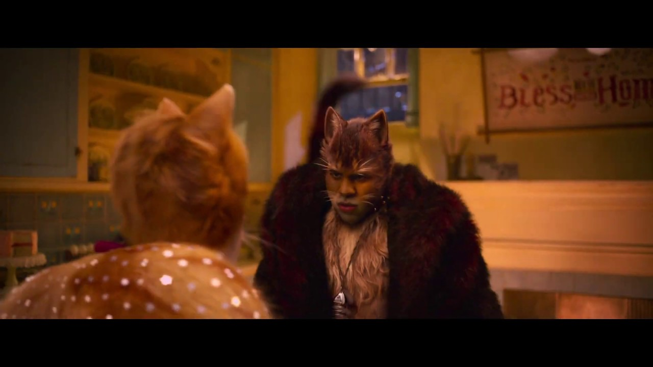 Cats Im Kino