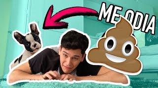 Fingiendo mi muerte frente a mi perro 😱- Sebastian Silva