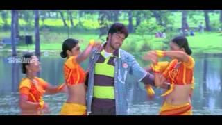 Gopi - Goda Meedha Pilli Movie | Nacchave Video Song | Allari Naresh, Gowri Munjal