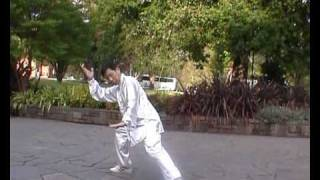 wu style tai chi 45 forms