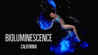 Bioluminescence California || Swimming in glowing water!