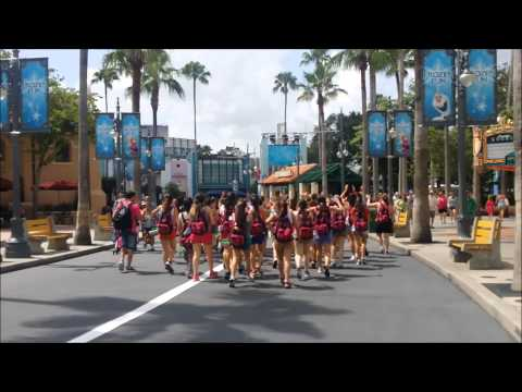 ~ Walt Disney World: Hollywood Studios (DHS) Turismo / Tour Group ~