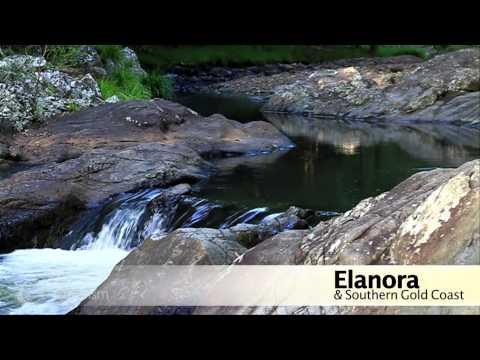 Elanora -Our Local Area