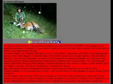 fermate la contessa dell'amore che uccide gli animali