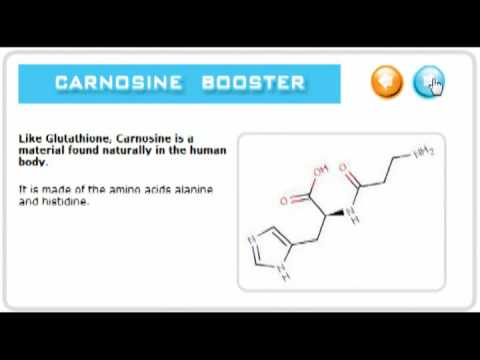 Glutathione and Carnosine help protect and repair your body