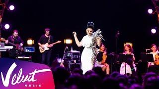 Ёлка - Большой концерт (Crocus City Hall, 25.11.2015)