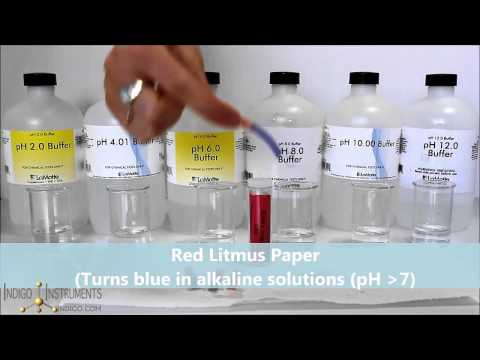 How to Use Litmus Paper for Simple Identification of Acids & Bases