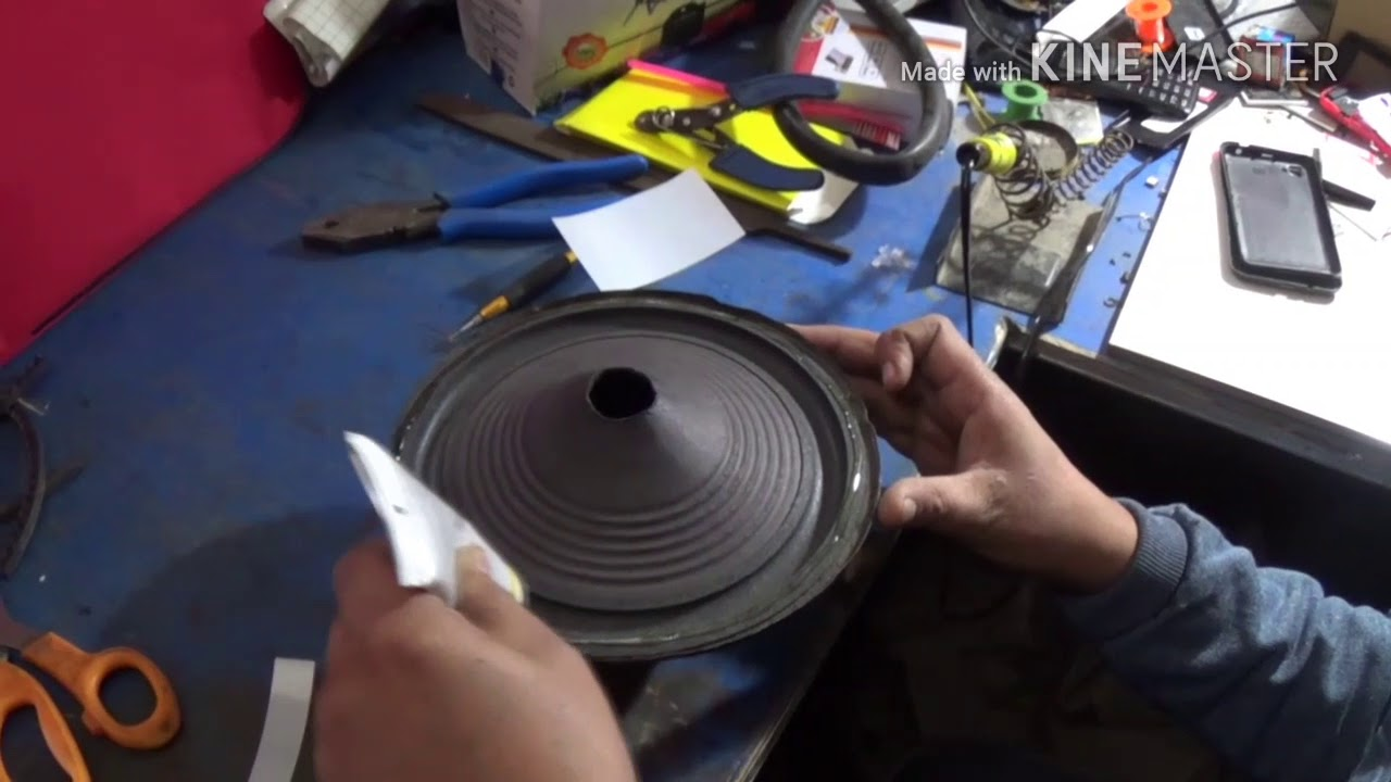 Speaker repair 8inch woofer(in hindi)