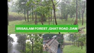 Srisailam Dam || Srisailam Forest Tour || Srisailam Ghat Road || Dam Water Gates India 2018