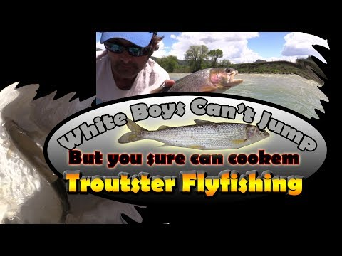 Fishing For Mountain Whitefish And Trout - White Boys Can't Jump