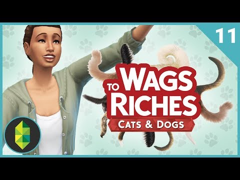 Wags to Riches - Part 11 (Sims 4 Cats & Dogs)
