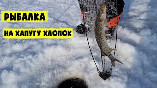 Рыбалка на хапуги 2021 Лов щуки сига Подлёдная рыбалка на Амуре