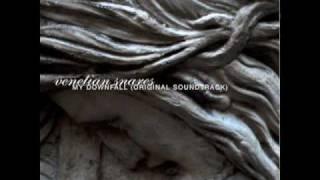 Venetian Snares- My Crutch
