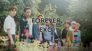 EXO - Forever (Rom/Han/Eng Lyrics)