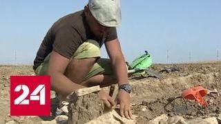 Открытия на поверхности  тайны прошлых столетий в Фанагории проступают по миллиметру