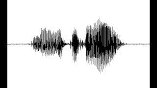 Halkbankası ses kaydı