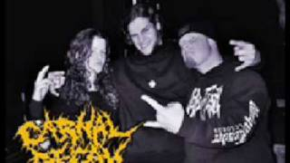 Watch Carnal Decay Ignorance video